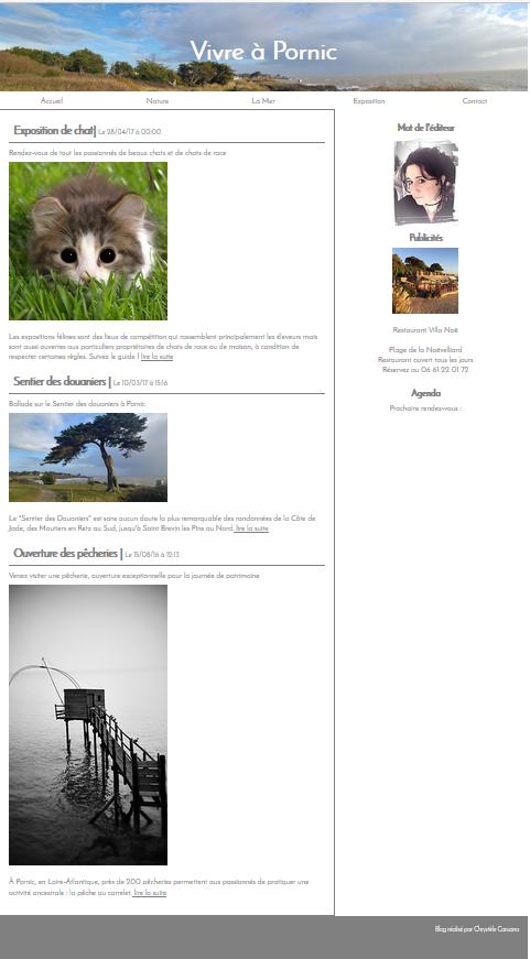 site-internet-maquette-page-accueil-blog-pornic