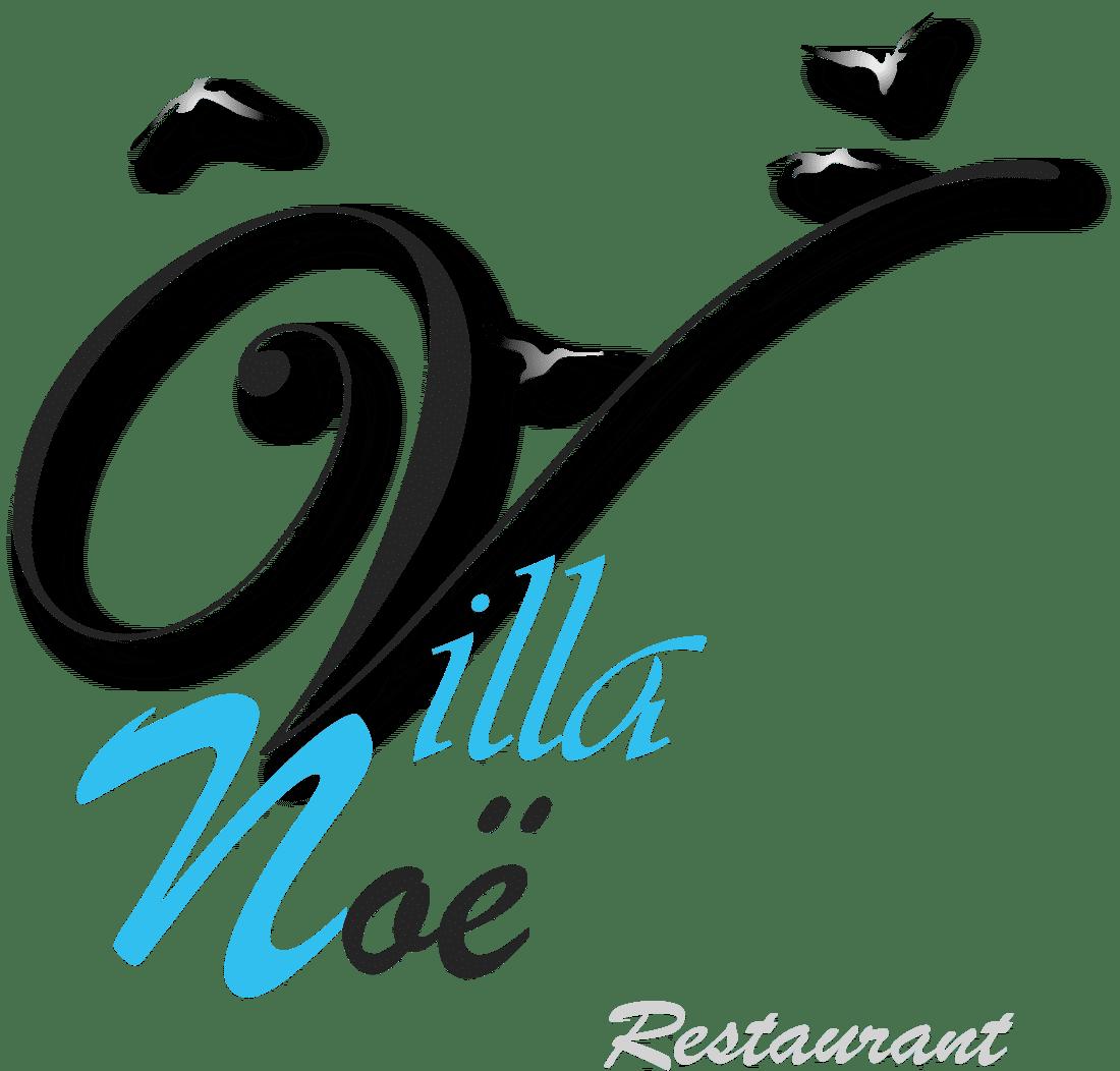 graphisme-refonte-logo-villa-noe-gris-fonce