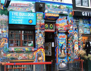 amsterdam-the-bulldog-couleur