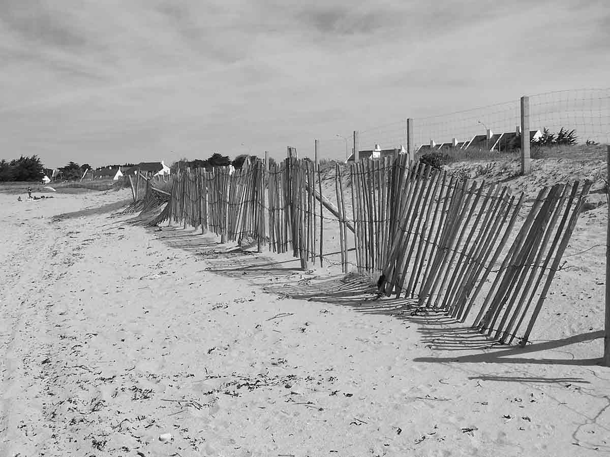 barriere-de-bois-sur-le-sable