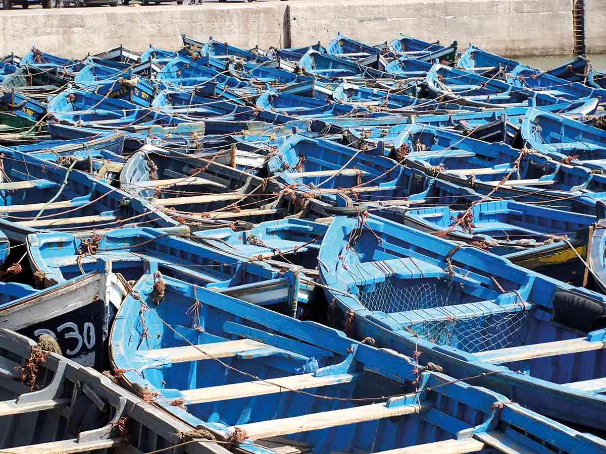 bateaux-bleus-port-essaouira-maroc