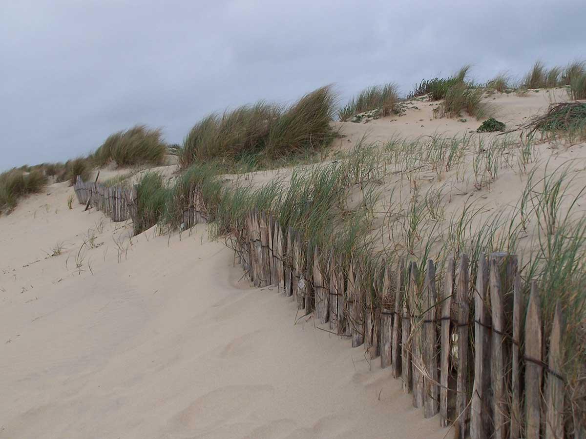 dunes-de-sables-royan